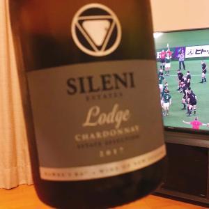 ラグビーワールドカップテレビ観戦