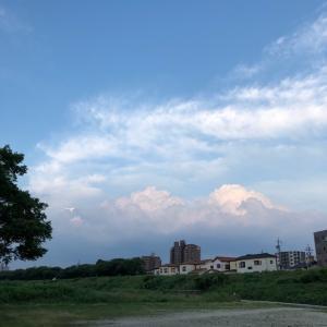 矢田川沿い