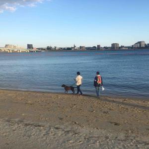 新舞子(愛知県知多市)でお散歩