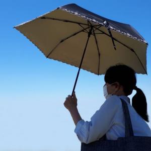 日傘が必要な季節がきた!でも日傘男子は浸透しない