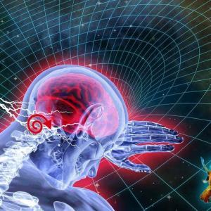 「右脳的思考」と「左脳的思考」どちらが良い?(勘の精度もバイオリズムと同じで循環する)4