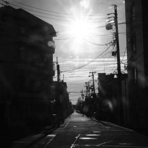 朝陽の当たる道。