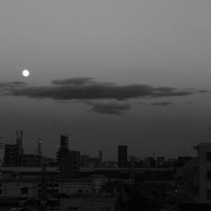 マジックアワーと月。