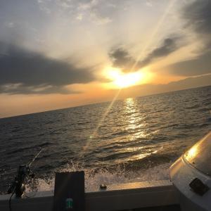富山湾 金剛丸さんで花見イカ と沖メバル
