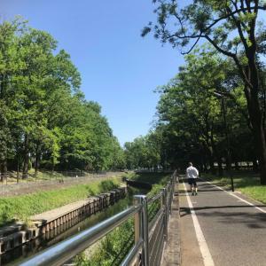 火曜恒例、和田掘公園RUN 22km