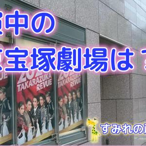 【動画】休演中の東京宝塚劇場に映るものとは?いま宝塚に思うこと
