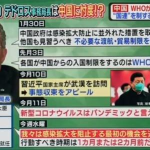 習近平主席のG20首脳テレビ会議の新型肺炎対応に関する重要な演説&牛耳られた国連機関【中国CCTV】