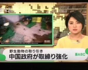 中国政府、武漢ウイルス感染源の野生動物取引き厳しい取り締まりも、SARS後規制解除したので懐疑的【オーストラリアABC】