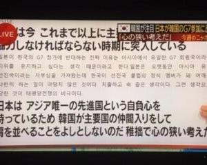 韓国紙「(稚拙で心の狭い)日本は韓国のG7参加を歓迎しなければならない」【日曜スクープ】