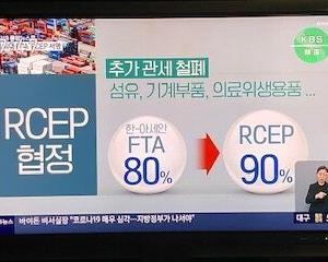 【#RCEP】韓国「とりわけ日本が参加した事も大きな意味!」「発展の余地が大きくなった♪」【韓国KBS】