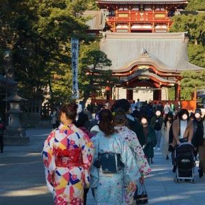 初詣と鎌倉神苑ぼたん園
