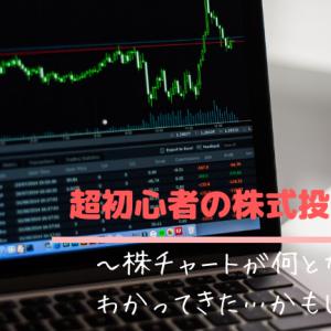 【超初心者の株式投資日記3】株チャートが何となくわかってきた…かもしれない