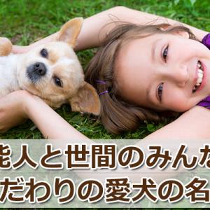 芸能人の犬の名前とペットの名前人気ランキング!【最新】