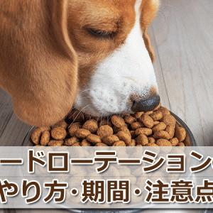 犬のフードローテーションのやり方3つと期間・注意点