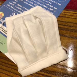 政府支給の布マスクをリメイク♪(ノーズワイヤー入りプリーツマスク)