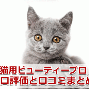 【口コミ・評判】猫用ビューティープロを辛口評価!