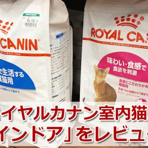 ロイヤルカナンを使用で猫に変化が?インドアを評価