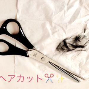 初!赤ちゃんのヘアカット!/自宅で散髪