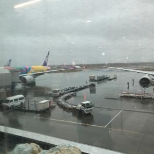 今日明日と札幌出張です♪