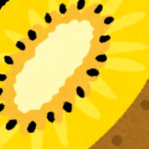 キウイは凄い果物だった!?キウイの栄養のお話