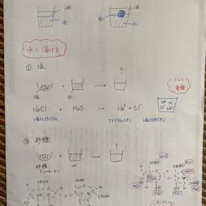 美しき人妻 メーテル女史はモー子の家庭教師〜小学2年&5年姉妹に化学授業