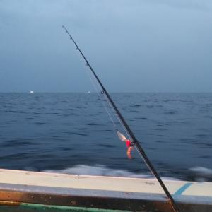 鮭釣最終の儀! 噴火湾跳ね打ち!