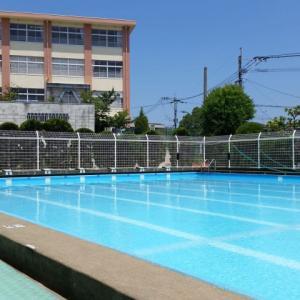 水泳の授業は見学で!