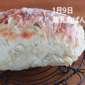 1月9日(木)離乳食パン教室 2月6日(木)おうちパン教室お教室募集開始です!