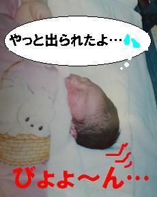 【再掲】にくまんヒストリー。<2>「生まれたっ!!」