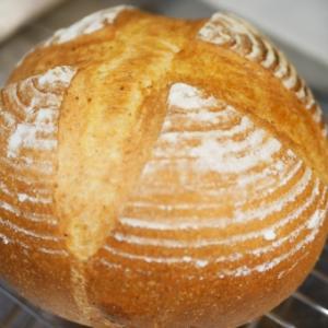 天然酵母パンの作り方 中種法の基本とカンパーニュのレシピ