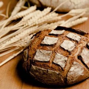 天然酵母パンの酸味の原因と抑える方法、元種にも注意