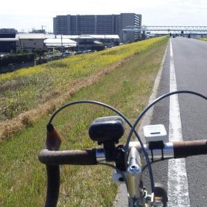 2020._3.15:江戸川CR・東京湾まで往復(70km)