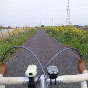 2020._4.15:手賀沼CR~小貝川CR~利根川CR(65km)