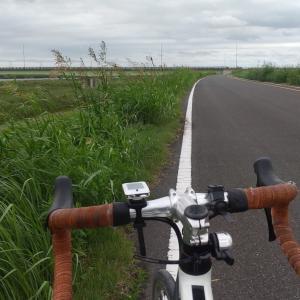 2020._9.19(土):柏~利根川CR印旛水門付近(65km)