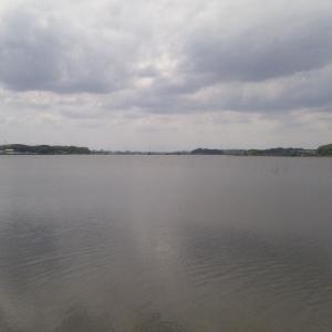 2021._5.15(土):柏~利根川CR~双子公園(90km)
