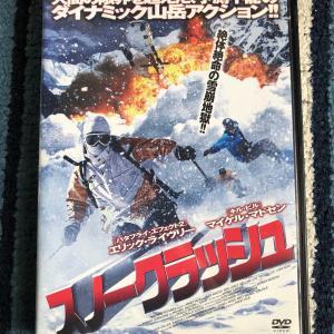 DVD購入
