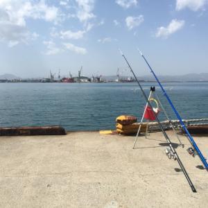 釣り初心者にもおすすめ!ぶっこみ釣りの魅力とは?