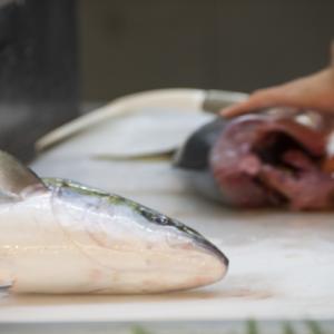 釣って捌き、食べるまでを教育という面で考える
