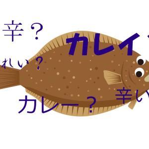 カレイ釣りはカレー(辛い)もんを食って待て!?