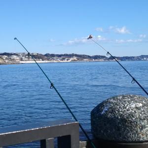置き竿の釣りのひまな待ち時間、みんなは何してる?