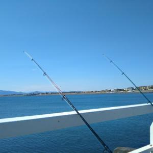 まずは必要最低限の釣り道具を揃えて何の魚でもいいから1匹釣ってみよう ~ちょい投げ釣り~
