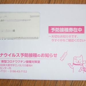 ワクチン接種券が届いた!