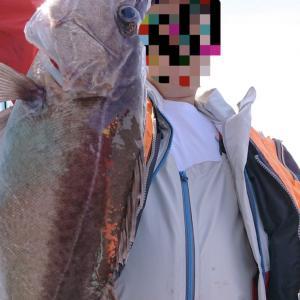 出た〜!幻の高級魚 アラ!@波崎沖