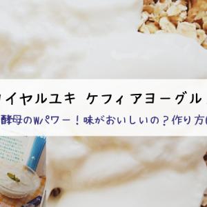 【ロイヤルユキ 口コミ】ケフィアヨーグルトの作り方(画像付)美味しいの?食べてみた