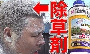【動画】【ドッキリ】除草剤を頭髪にぶっかけたら大事故にwww