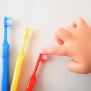 赤ちゃんの歯磨きっていつから?心を鬼にしてやった結果・・・