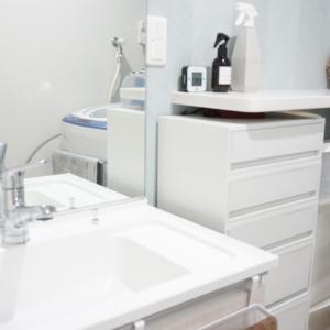 【Web内覧会】ツッコミ所が多すぎる洗面脱衣所