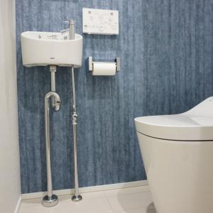 【Web内覧会】10坪の狭小住宅の極狭!トイレ