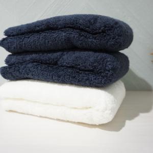 【雨の日の洗濯物】狭小住宅の室内干しは浴室で除湿器を使って乾かす