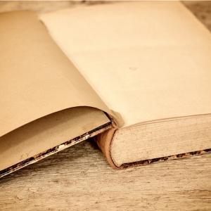 私のブックレビュー: 読んでない本について堂々と語る方法(著:ピエール・バイヤール)🐾